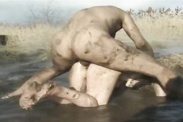fat whores mud wrestling