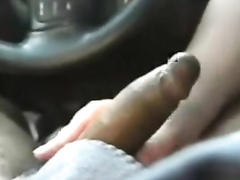 BBW blows my stiff dick in the car