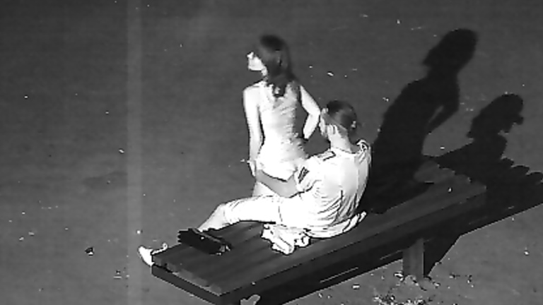 Spying on a wedding guests having sex on a public park bench