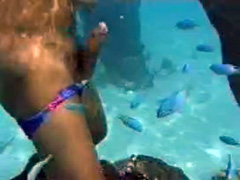 Snorkeling blonde hottie blows her friend underwater